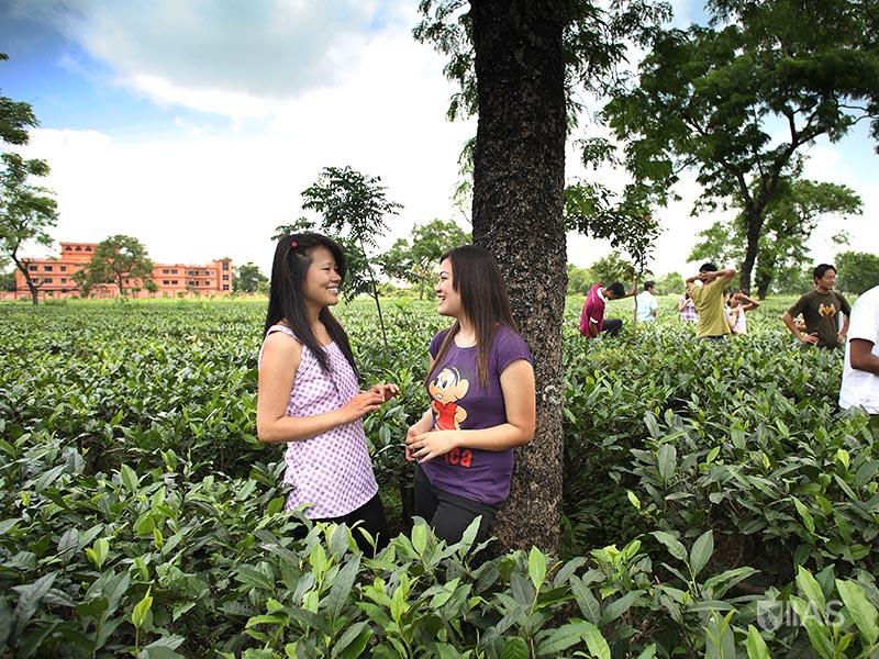 Female students from Darjeeling leaning on tree in tea garden surrounding IIAS Siliguri campus